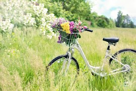 bicycle-788733__180